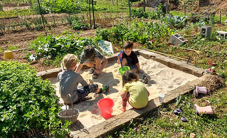 10 Steps To Starting A Community Garden Carolina Country