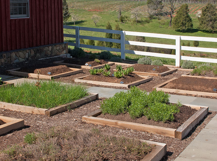 raised bed colonials