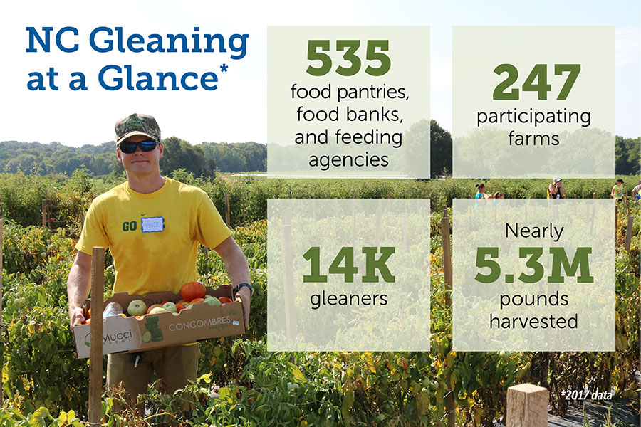 Gleaning Stats
