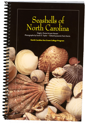Seashells book2