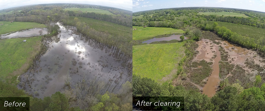 Before and After pasture Beavers