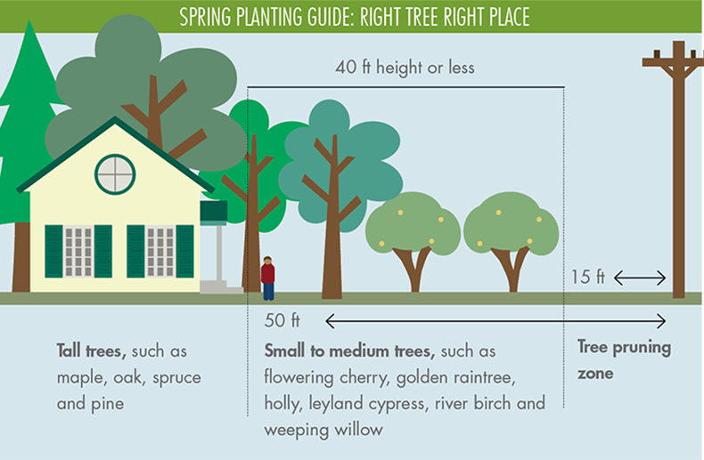 planting season is right around the corner! while trees and shrubs make our  yards and neighborhoods beautiful, they can also cause right-of-way issues  and