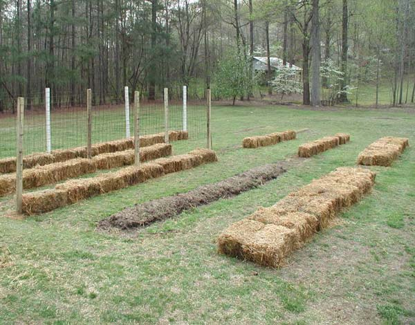 North Carolina Straw Bale Gardens in Your Backyard - Carolina Country