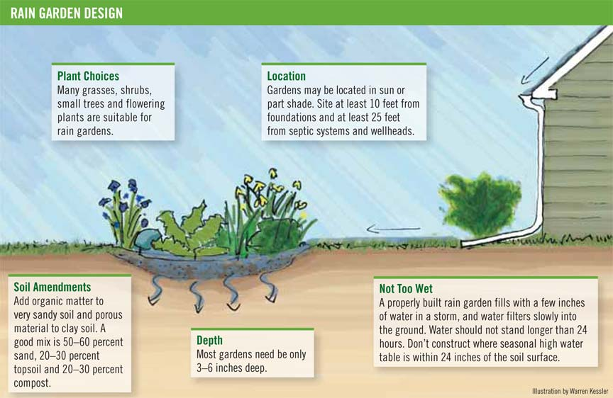 Garden Guide 10 Rain Gardens Carolina Country