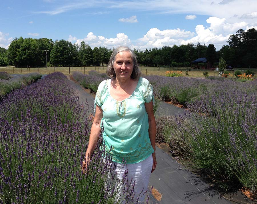 North Carolina's Lavender Landscapes - Carolina Country