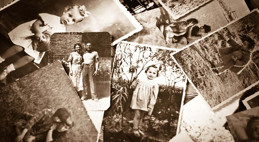 Exploring the Roots of Your Family Tree - Carolina Country
