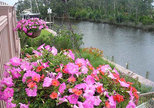 Great-Gardens-NC-Albemarle-Sound