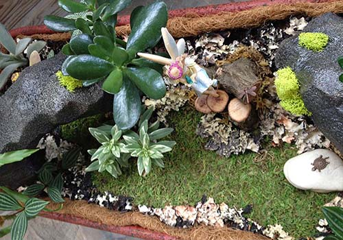 Great-Gardens-NC-fairy-garden