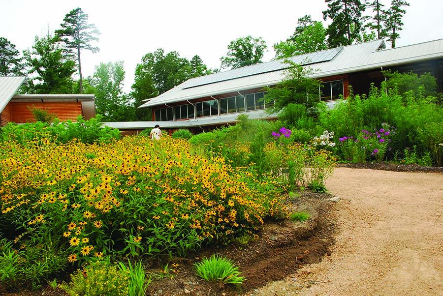 Botanical Garden CH 2