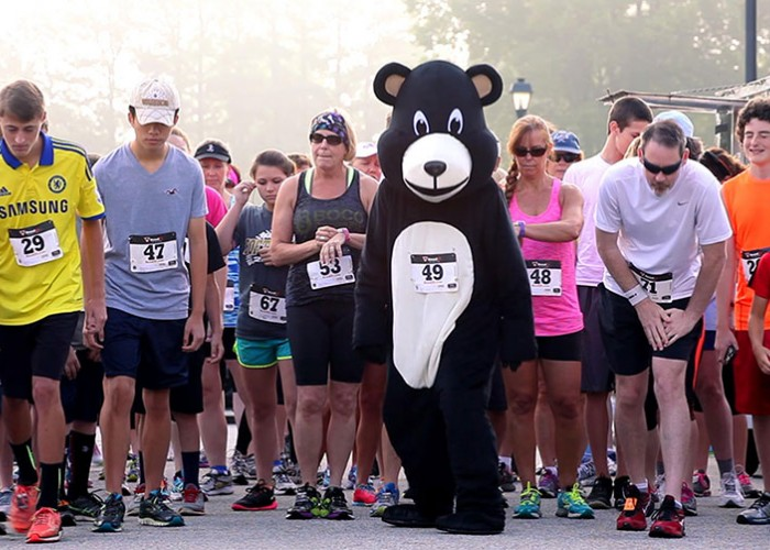 NC Festival is a Bear Lovers' Paradise