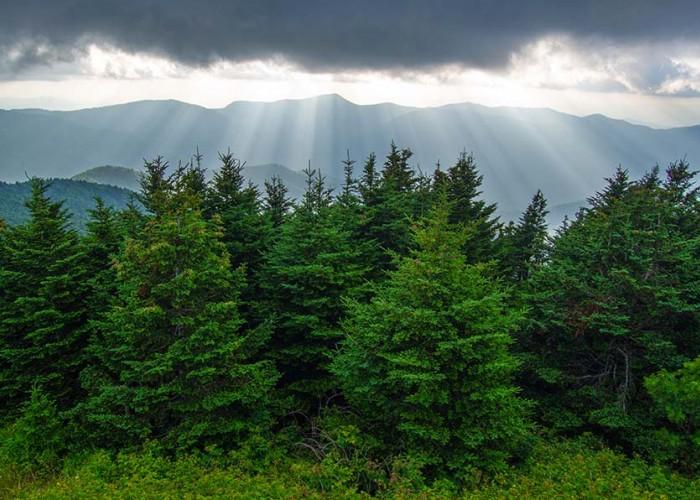 U.S. National Parks turn 100