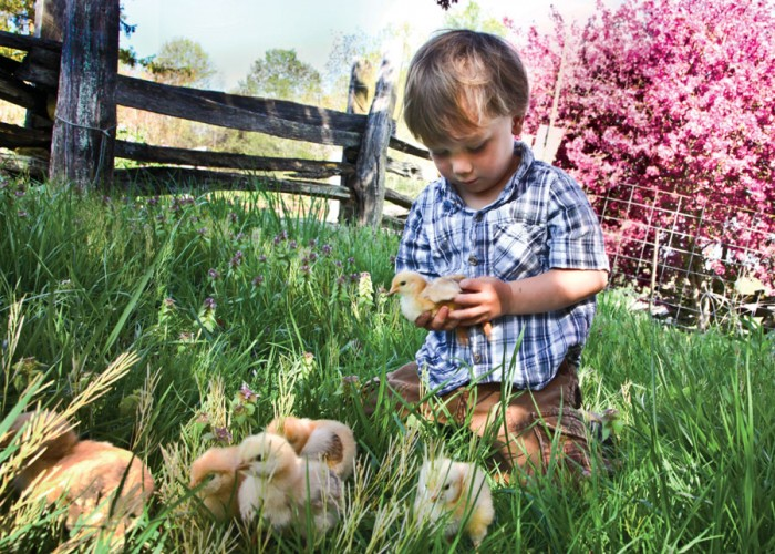 Farm Living: The Place to Be