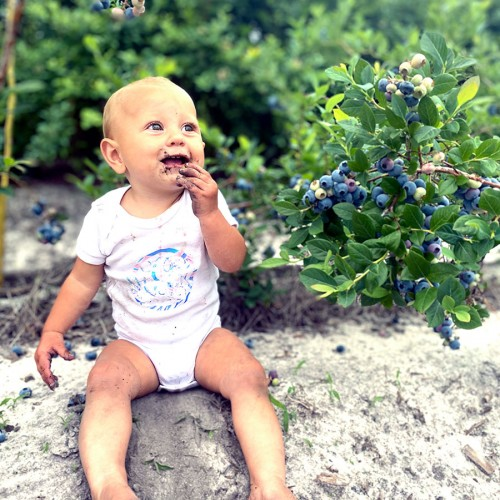 Blueberry season is our favorite season in Bladen County. I grew up with blueberry dirt between my toes, and I'm so blessed that my babies get to do the same. —Brooke Gooden, Elizabethtown, Four County EMC