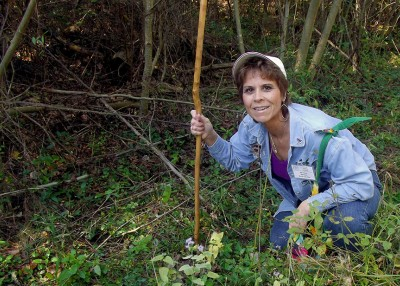 On the Hunt for Edible Plants