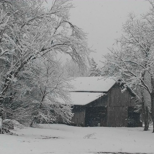 An Alexander County winter snow scene complete with old barn from the 50's in Taylorsville. This is the glorious, peaceful view we have from our front door every time it snows—Appalachian winter heaven! —Courtney Phillips, Taylorsville, EnergyUnited