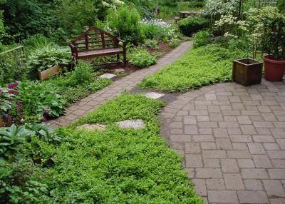 Tips for the New Gardener