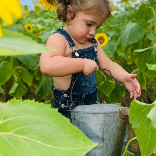 """Our 2-year-old daughter Lettie """"watering"""" the sunflowers on our NC farm. —Elizabeth Cooke, Rockingham, Pee Dee Electric"""