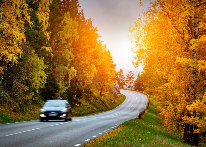 4 Tips for a Safe Fall Road Trip