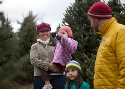 Fraser Firs: North Carolina's Christmas Gift to the Nation