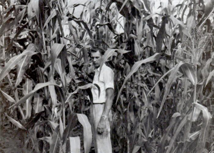Tall Man, Taller Corn