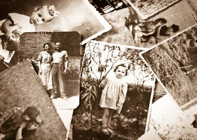 Exploring the Roots of Your Family Tree