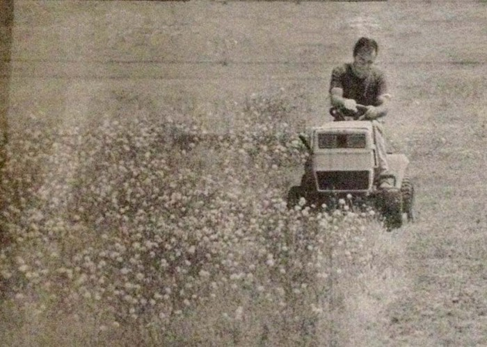 Cumberland County cotton mills