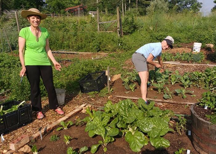 Rethinking Community Gardens