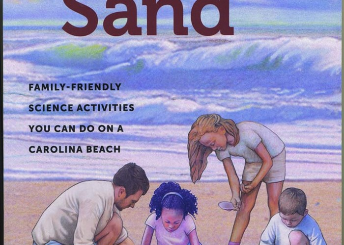 Lessons Gleaned from Beaches