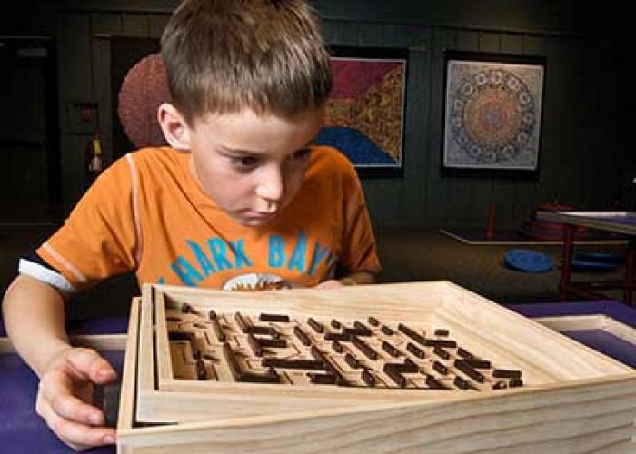 'Mazes & Brain Games' in Raleigh
