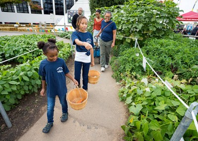 'Field of Dreams' to Provide Hands-on Ag Experience for Fairgoers