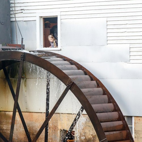 While attending the Murray's Mill Harvest Folk Festival in Catawba, I shot this 28-foot waterwheel and noticed a little girl looking out the window of the mill. —Paulette Mojica, Morganton, Rutherford EMC