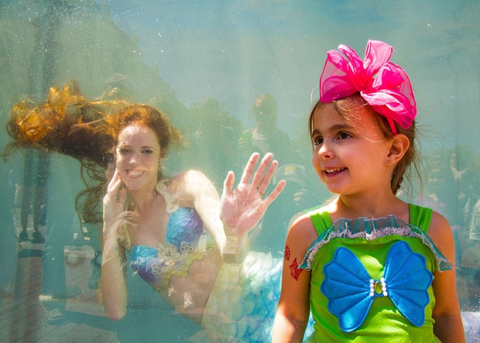Calling all Swashbucklers and Mermaids