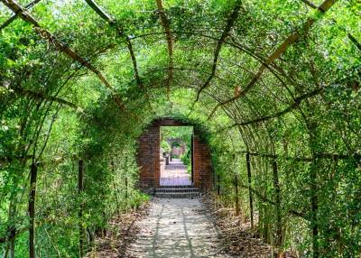 Tryon Palace Celebrates 250 Years