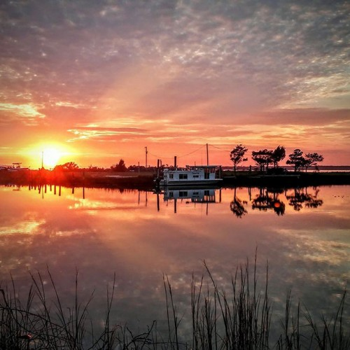 Looking south across John Willis Creek on Harkers Island, you'll see Shackleford Banks to the left and to the right is Beaufort. Winter sunsets from our coast are brilliant! —Rosita Griffin, Harkers Island, a member of Carteret-Craven Electric Cooperative