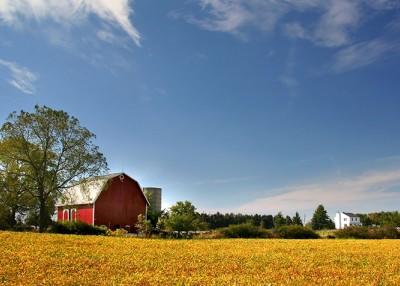 Energy Efficiency on the Farm