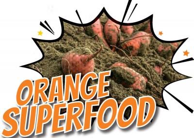 The North Carolina Sweet Potato