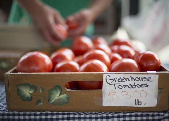 Timeless Tomatoes