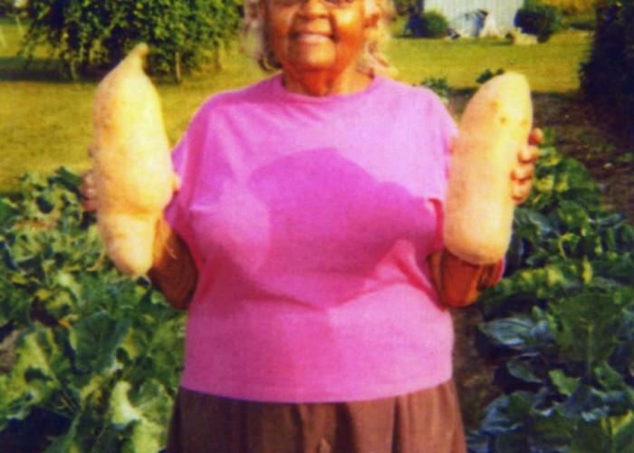 Now That's a Sweet Potato!