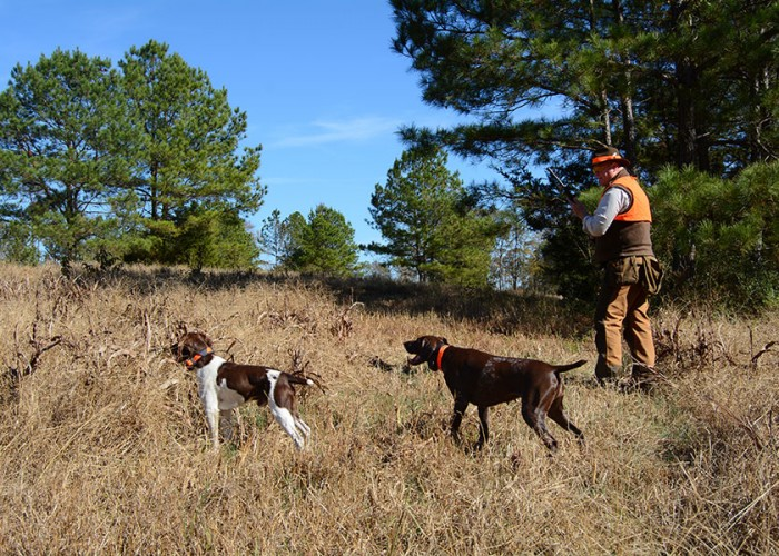 Hunting Preserves Offer a Safe, Accessible Experience