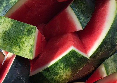 What Makes a Bogue Sound Watermelon So Sweet?