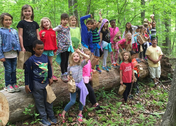 'Mingle' with Nature in Surry County
