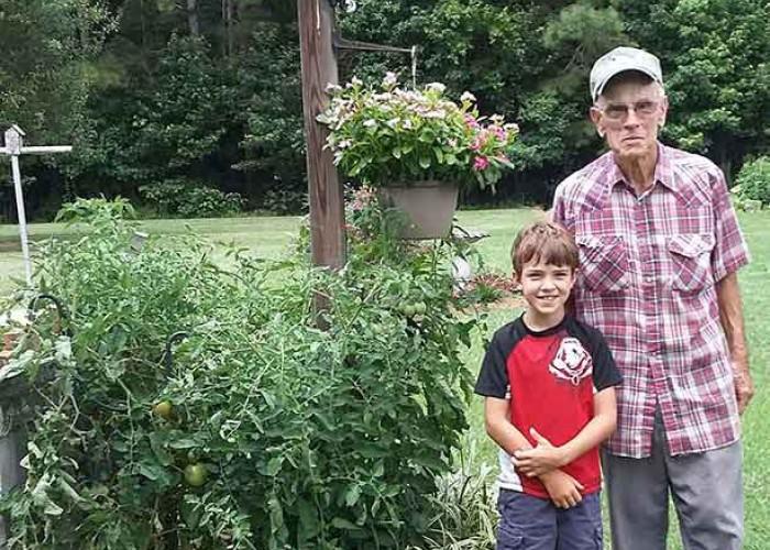 The Tomato Plant Next Door