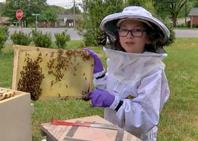 The Little Beekeeper