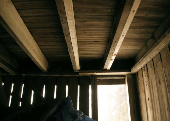 How to handle musty crawlspaces