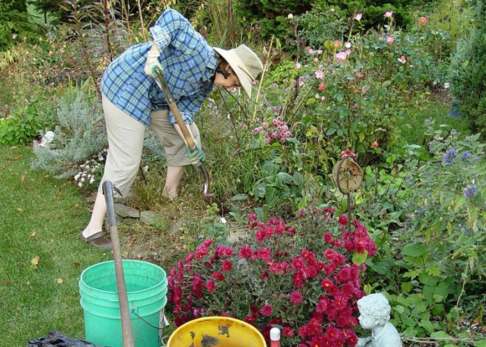 Tips for a Great Garden with Less Work