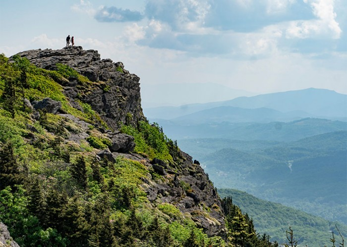 North Carolina's Treasure Trove of Natural Resources
