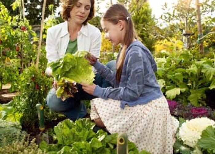 Teach Your Children How To Garden