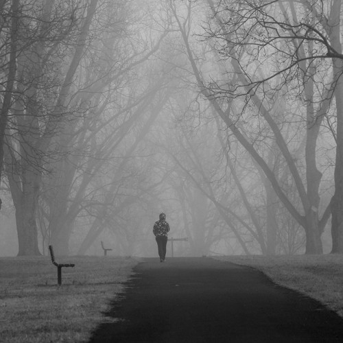 I woke up to a dense fog covering Wake Forest which inspired me to take photos at nearby Joyner Park. The pecan grove was especially beautiful. My very last shot revealed a young lady appearing out of nowhere. —Rick Allen, Wake Forest