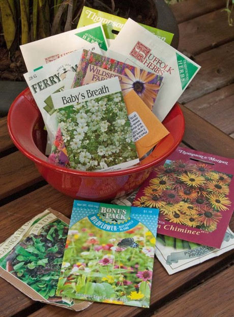 Save those seeds carolina country for Country garden 6 pack