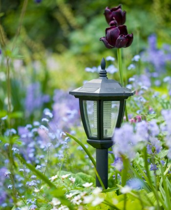 Solar Lights for Outdoor Illumination